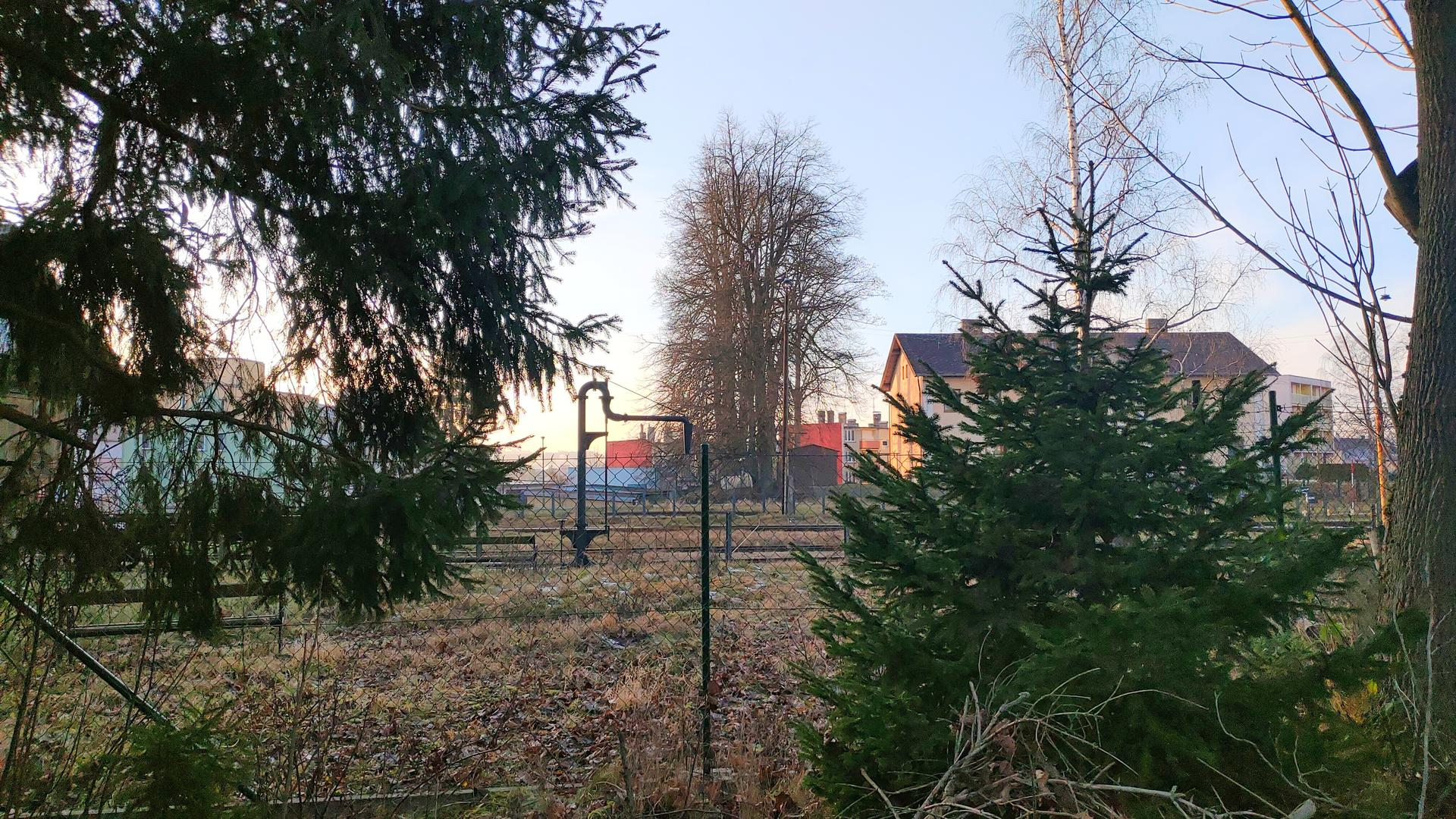 Projekt víkendové bydlení II (aneb návrat ke kořenům) - budoucí výhled z obýváku