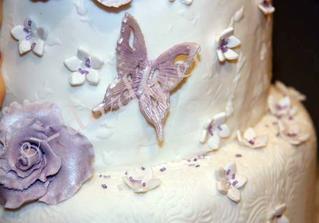 motýlci co budou na dortu a roládách