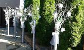 Pronájem váz - výzdoba na svatbu či oslavu ,