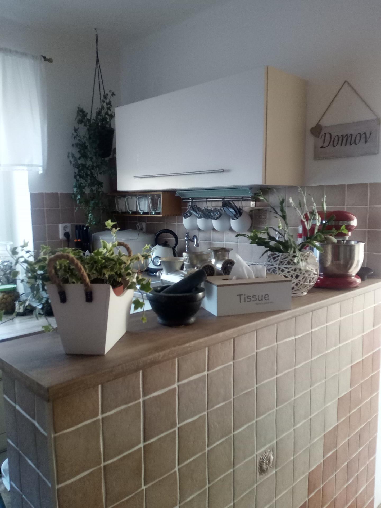 V naší kuchyni - Obrázek č. 2