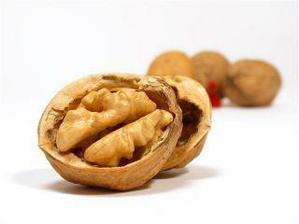 Ořechy oříšky