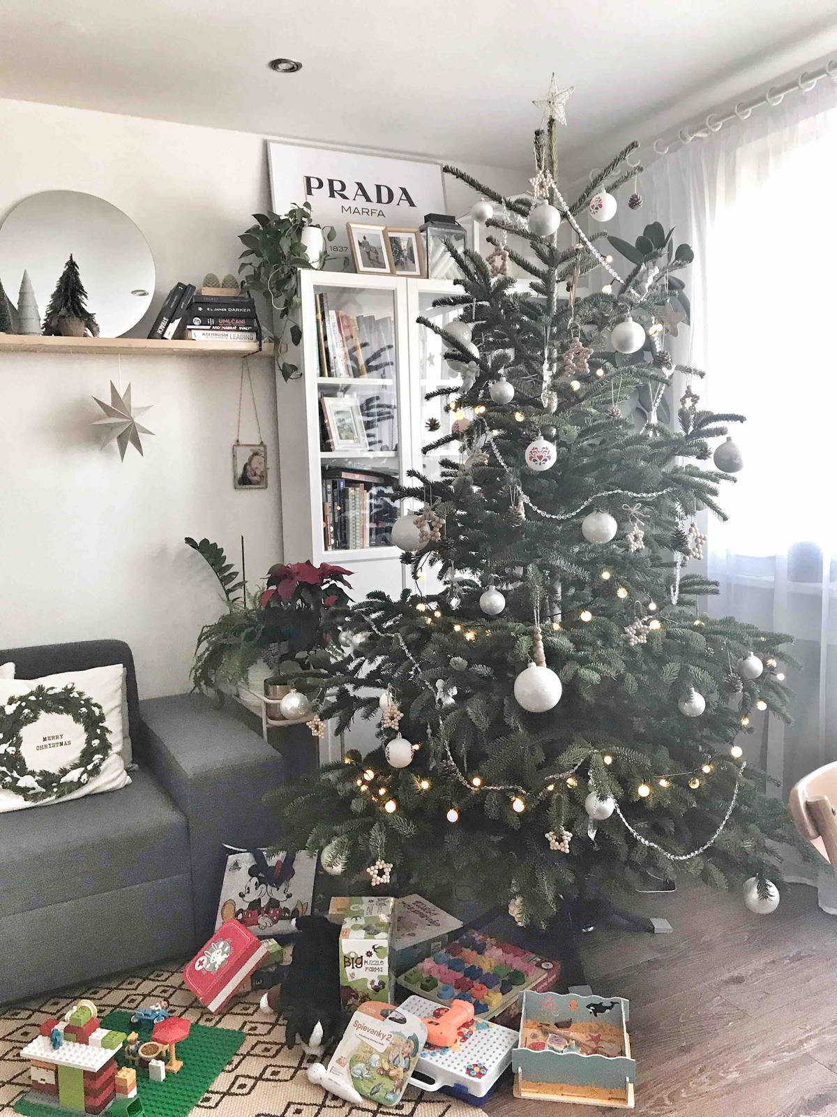 Vianoce 2019 ;) - Obrázok č. 10