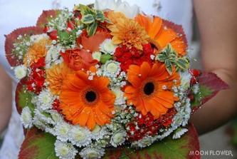 krasne zive a vela kvetov, paci sa mi.
