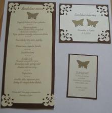 menu a kartičky... s motýlikmi