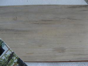 Borovice bílá fatra- vzorník