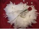 Moja ružovučká svadba - krásny vankúšik