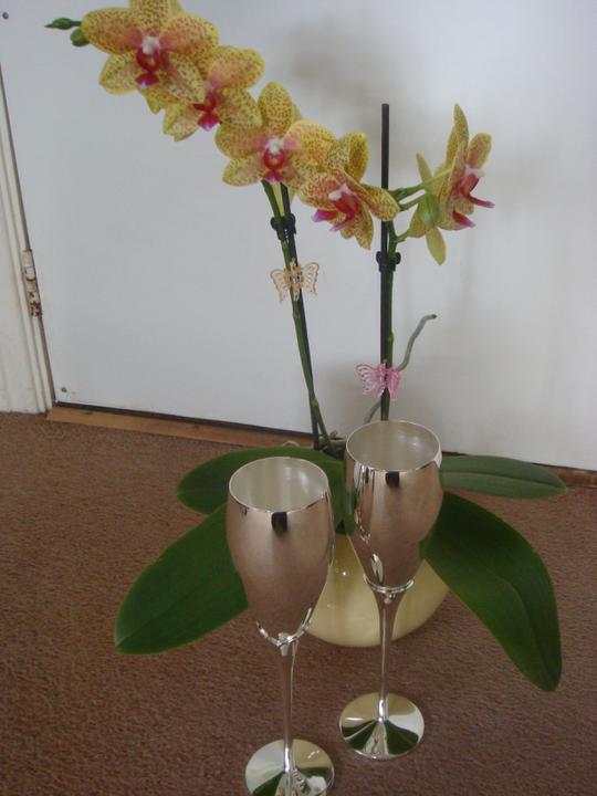 8.9.2012 - nase svadobne pohare....uplne ma ocarili...