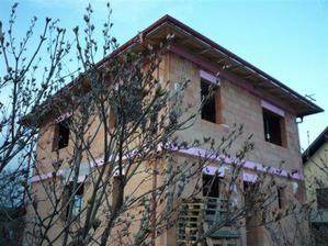 4 2009 rozkvita orgovan