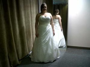 These pics dont give dress justice. next fitting im gonna get a better pic
