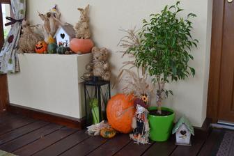 troska jesennej dekoracie, ked uz je taka zima... :)
