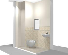 male WC