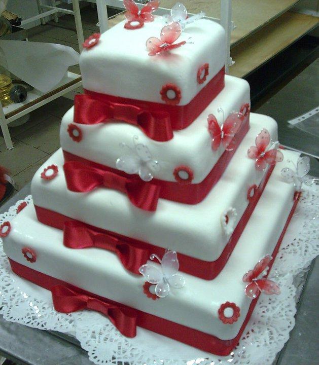 Moje predstavy o svadobnom dni.... - Naša tortička len v ružovej :-))))