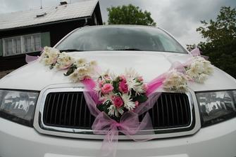 nevestino auto