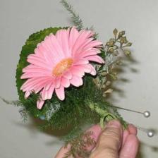 budú to takéto ružové gerberky :-)))))))