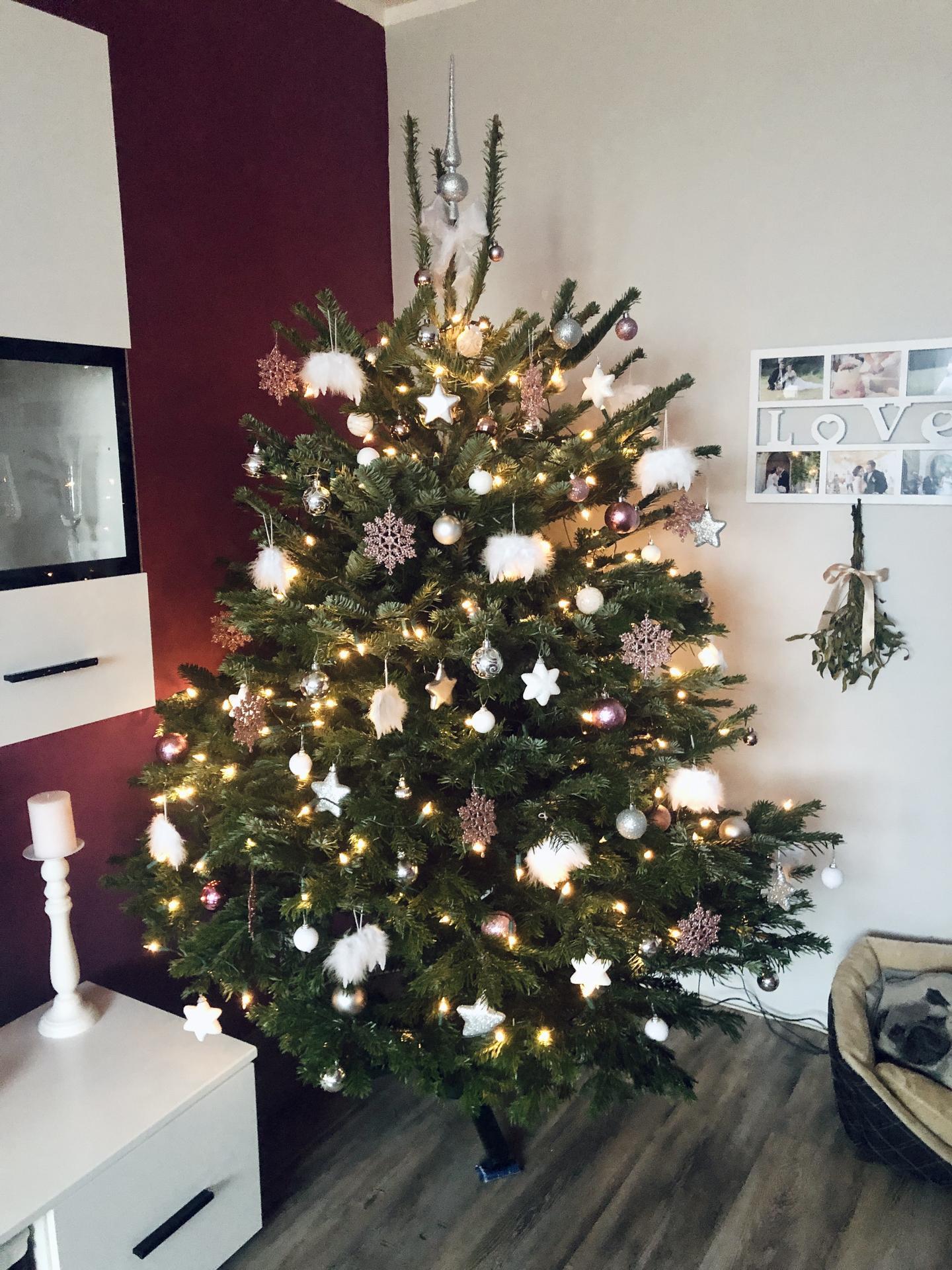 Tak u nás letos poslední Vánoce v bytě, příští rok už budeme v 🏠🤩 Všem krásné svátky v kruhu rodiny🎄✨✨ - Obrázek č. 1