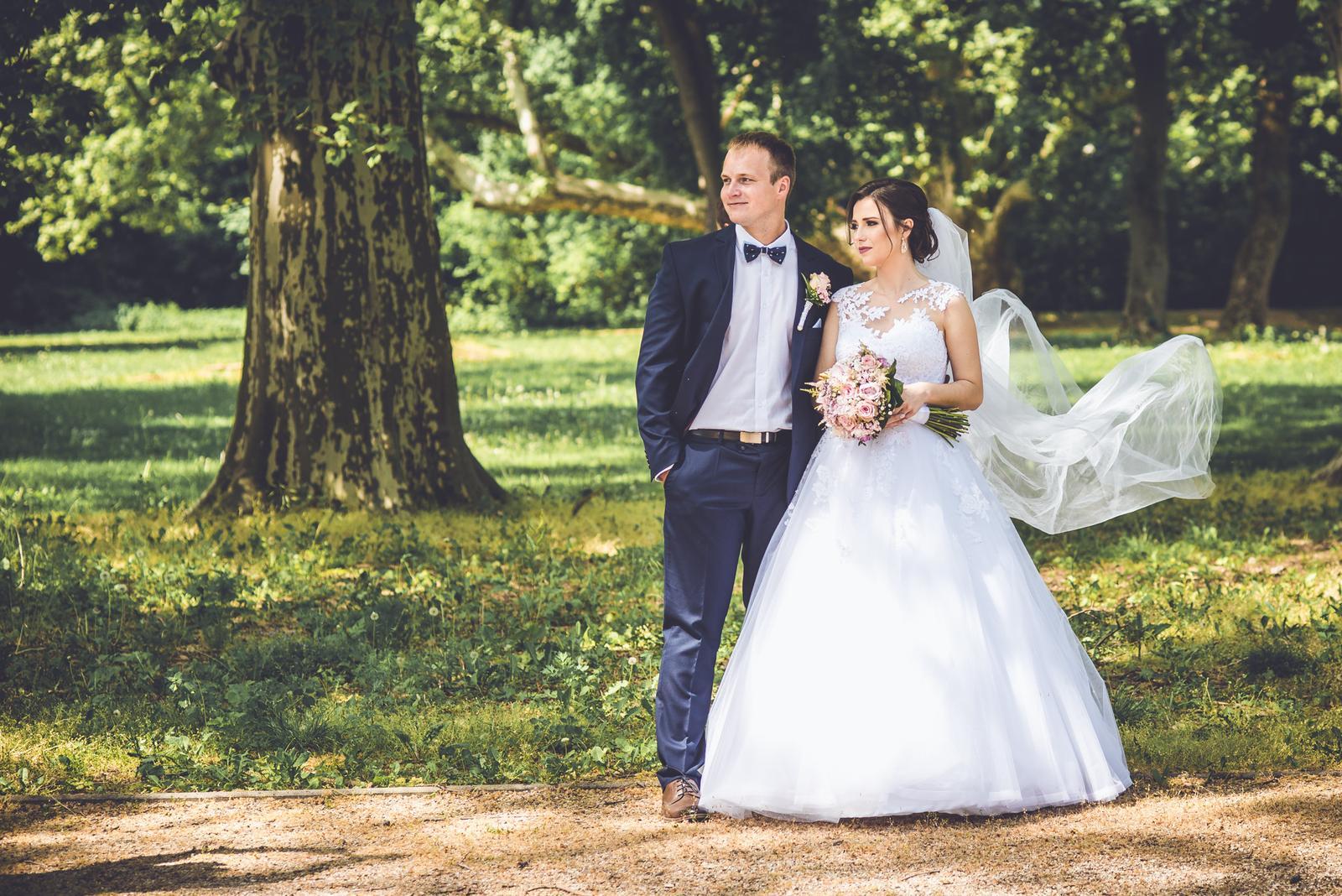 511e75f6a8 Fotograf a kameraman na svadbu 14.9.2019 v Trnave ...