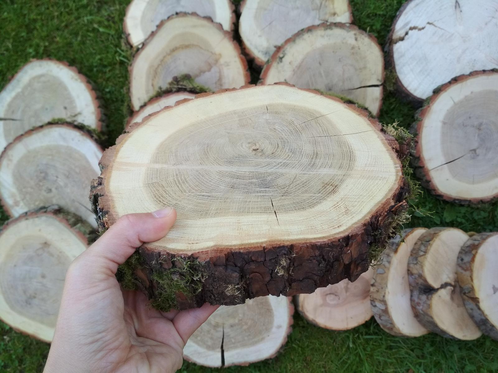 Dřevěná kulatina - Obrázek č. 1