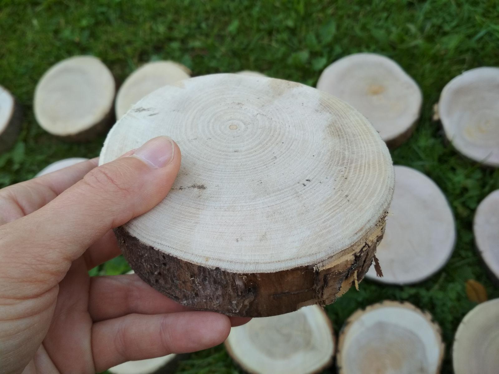 Dřevěná kulatina - Obrázek č. 3
