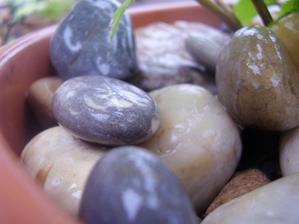 Moje milované kamínky