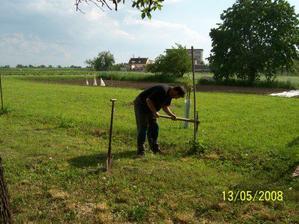 ...konečně budeme mít plot kolem celého pozemku...manžel vytahuje staré sloupy ...