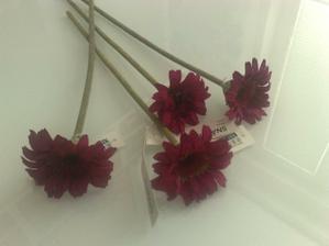 Takéto kvety budeme mať na našom krásnom Saxe....aj prísavky už mmám...ešte tyl a výzdoba na aute je kompletná