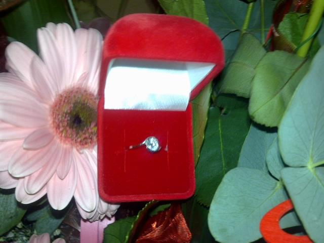 Pár predsvadoných...... :-) - všetko sa to začalo Valentínom 2011........