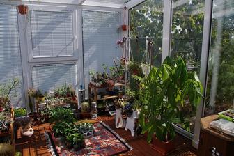 milujem moju záhradu