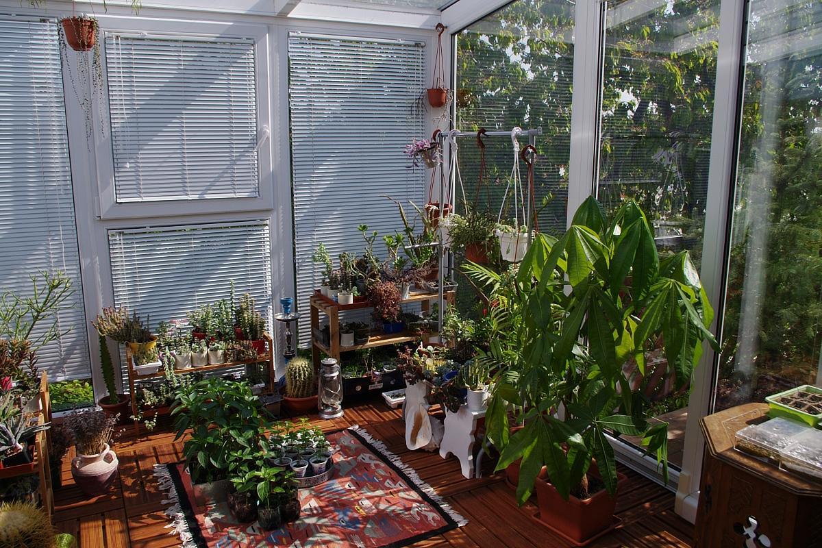 Zimná záhrada - milujem moju záhradu