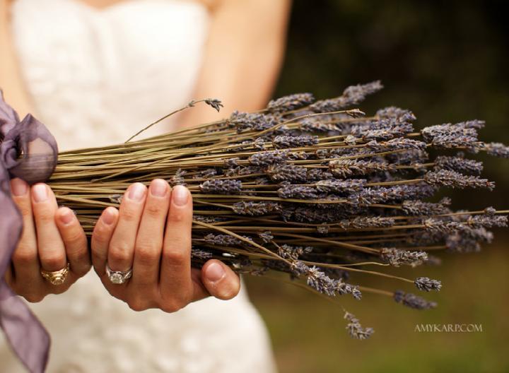 Wedding in Provence - Obrázok č. 12