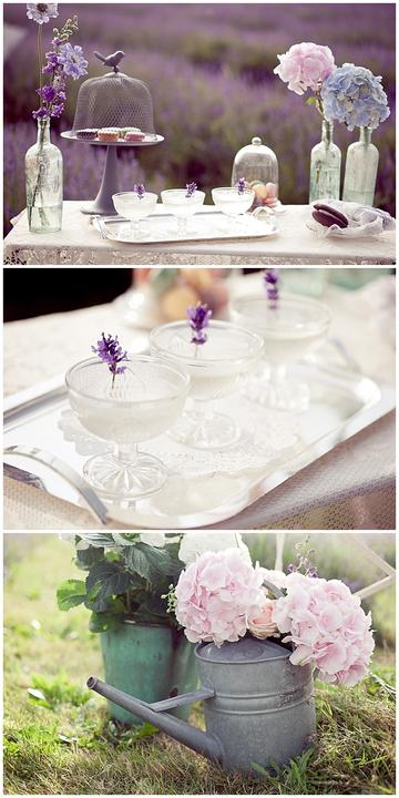 Wedding in Provence - Obrázok č. 39
