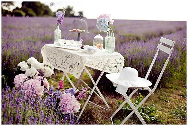 Wedding in Provence - Obrázok č. 40