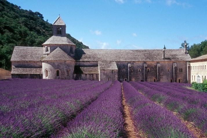 Wedding in Provence - Obrázok č. 46