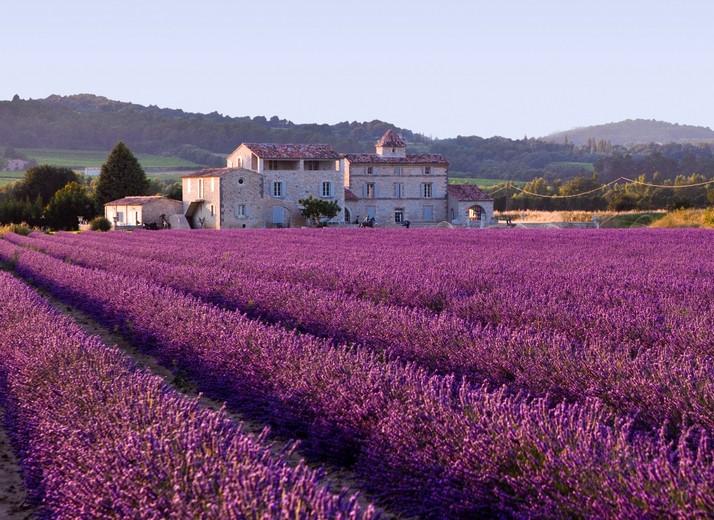 Wedding in Provence - Obrázok č. 48