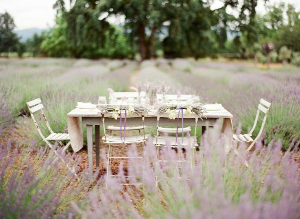 Wedding in Provence - Obrázok č. 50