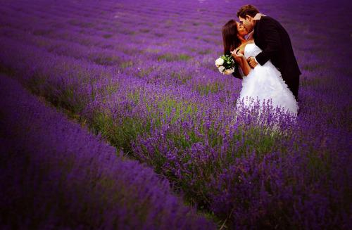 Wedding in Provence - Obrázok č. 54