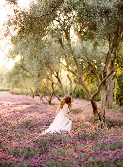 Wedding in Provence - Obrázok č. 57