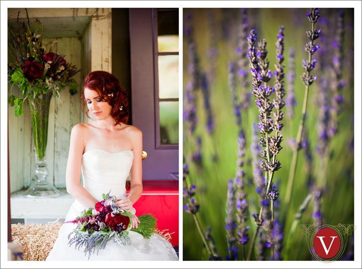 Wedding in Provence - Obrázok č. 60