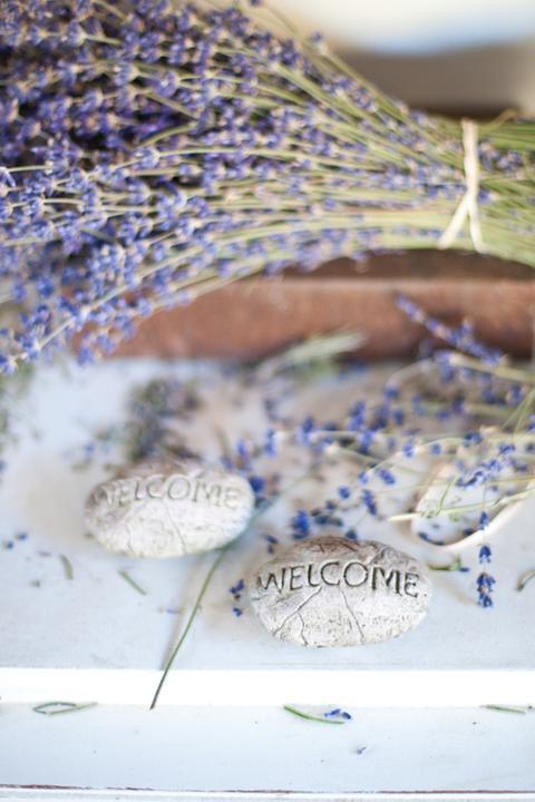 Wedding in Provence - Obrázok č. 81