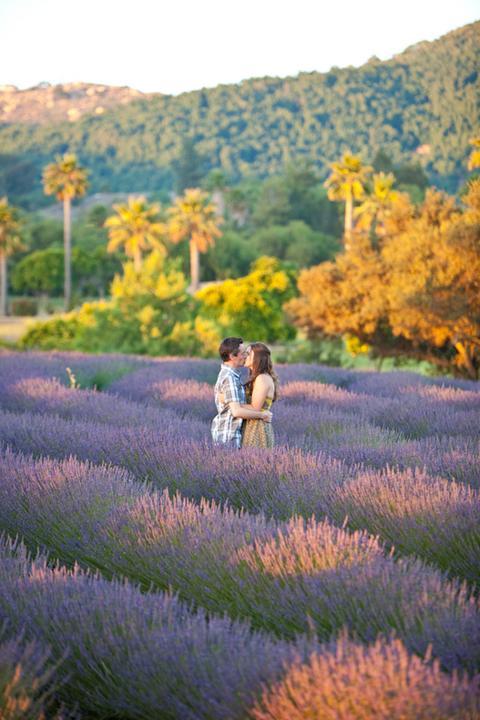 Wedding in Provence - Obrázok č. 85