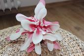Růžovo-bílý květ k dekoraci,