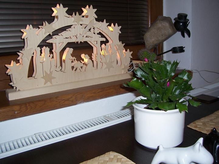 Vánoce 2010 - Obrázek č. 8