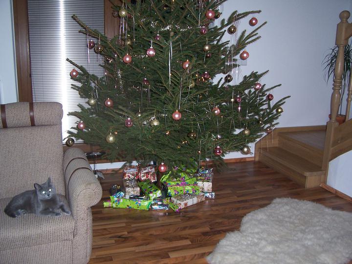 Vánoce 2010 - Tomis hlida darecky:-)