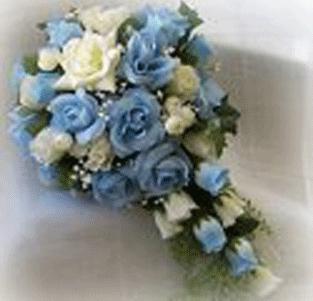 Vsetko,co ma zaujalo - sa mi velmi pacia modre ruze a preto by som rada mala takuto kyticu..