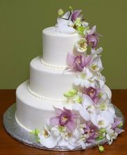 tortu chcem so zivymi orchideami