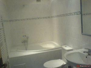 koupelna je vzhledem ke zbytku poměrně velkorysá