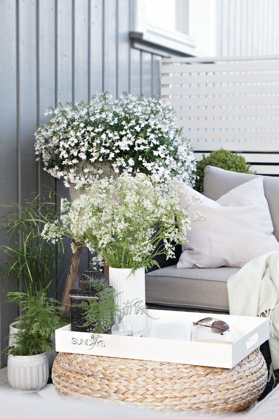 Malá zahrada, balkon - Obrázek č. 3