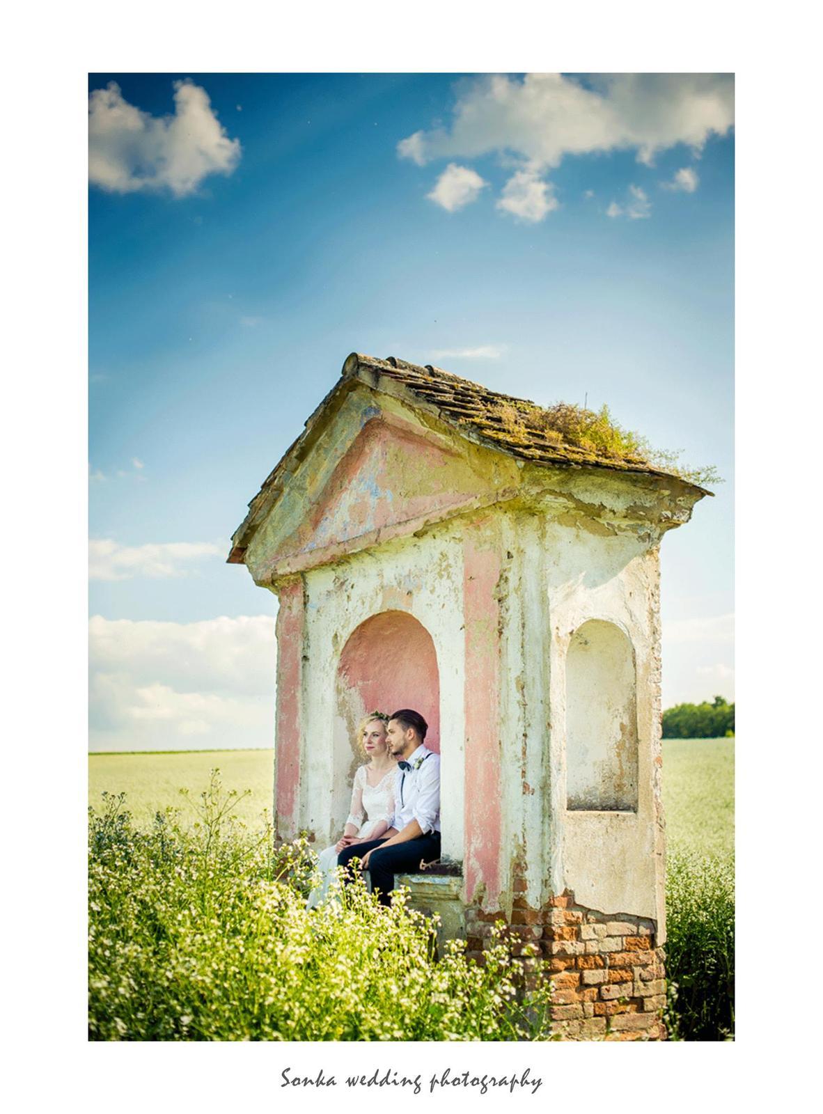 Wedding photography - Obrázek č. 11