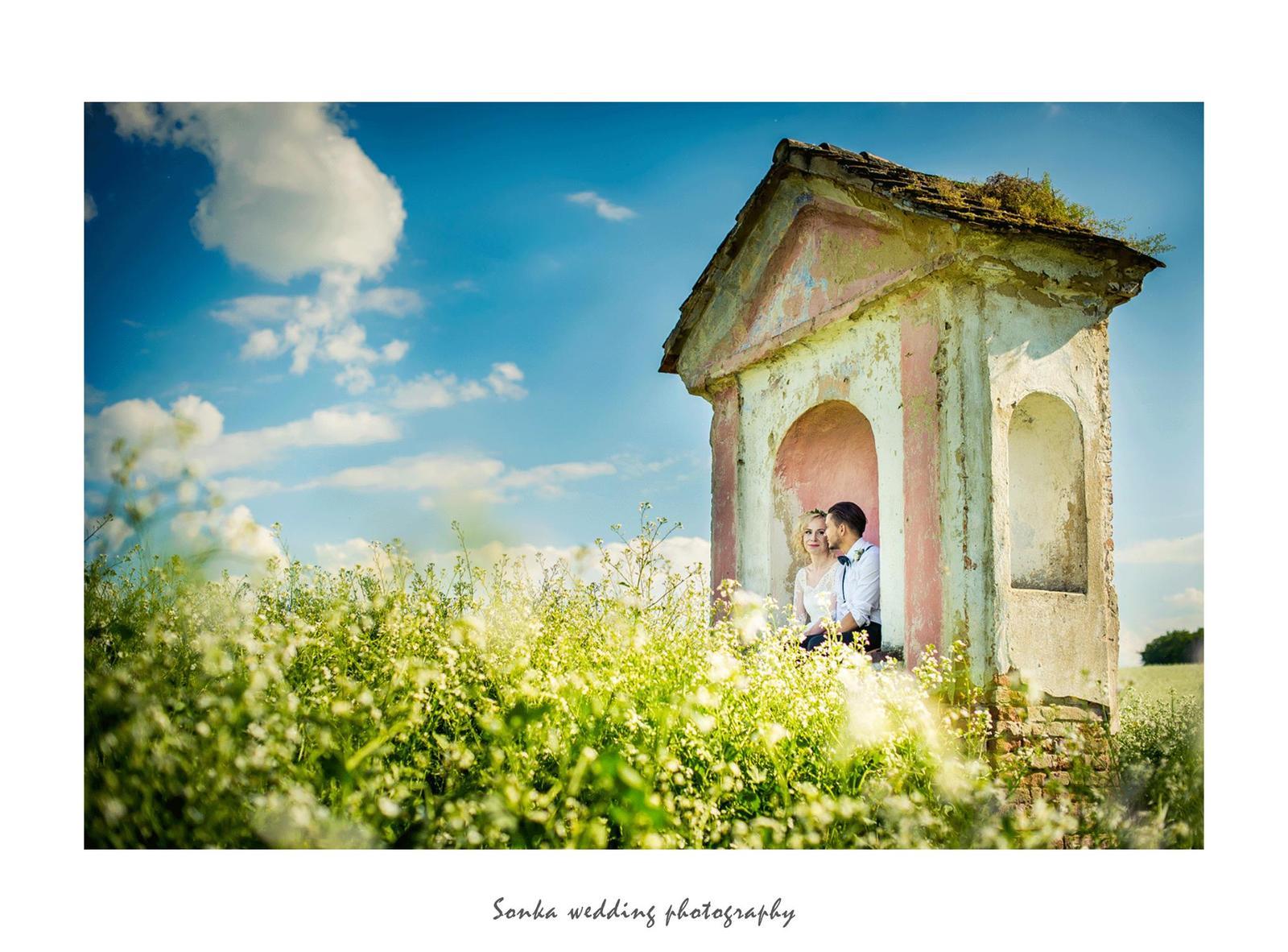 Wedding photography - Obrázek č. 12