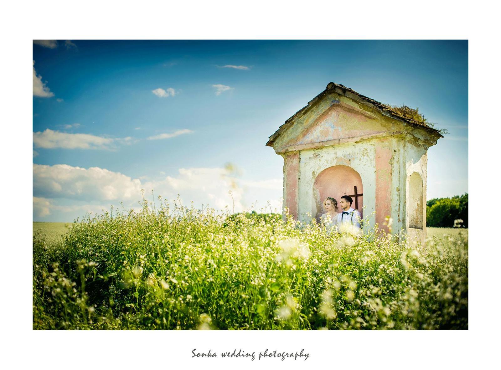 Wedding photography - Obrázek č. 14