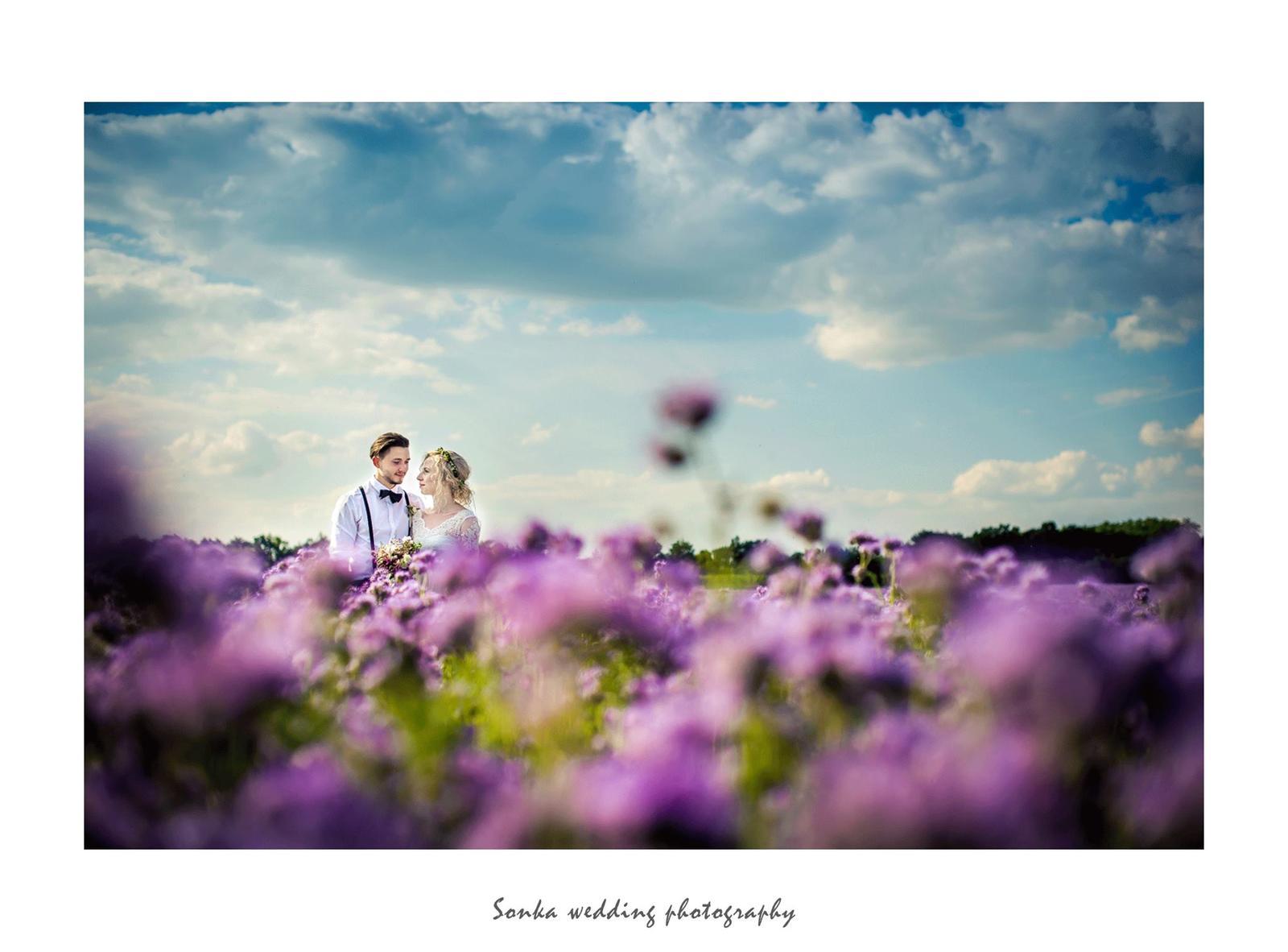 Wedding photography - Obrázek č. 17